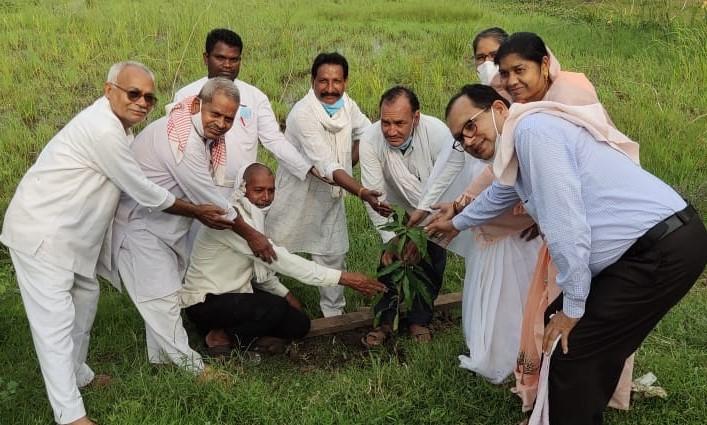 भानपुरी में ब्रह्मा कुमारिज गीता पाठशाला में हरियाली दिवस मनाया गया